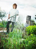 Woman watering garden beds — Stock Photo