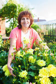 Woman in the garden cares for flowers — Stock Photo