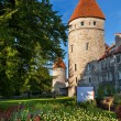 Towers of Tallinn. Estonia — Stock Photo #12466159