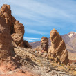Teide National Park. Tenerife. Canary Islands — Stock Photo #14384309