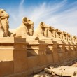 Sphinxes avenue. Luxor, Egypt — Stock Photo #15649819