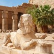 Sphinx. Karnak Temple, Luxor, Egypt - Stock Photo