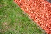 Çim ve malç — Stok fotoğraf