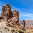 Teide National Park. Tenerife. Canary Islands — Stock Photo #28464811