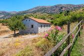 Auf dem land. kreta, griechenland — Stockfoto