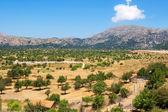 Lasithi Plateau. Crete, Greece — Stock Photo