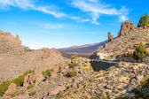 Teide National Park. Tenerife. Canary Islands — Stock Photo