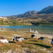 Kournas lake. Crete, Greece — Stock Photo