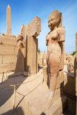 Estátuas no templo de karnak. luxor, egito — Foto Stock