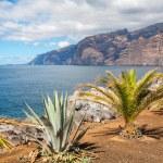 Los Gigantes. Tenerife, Spain — Stock Photo #49724299