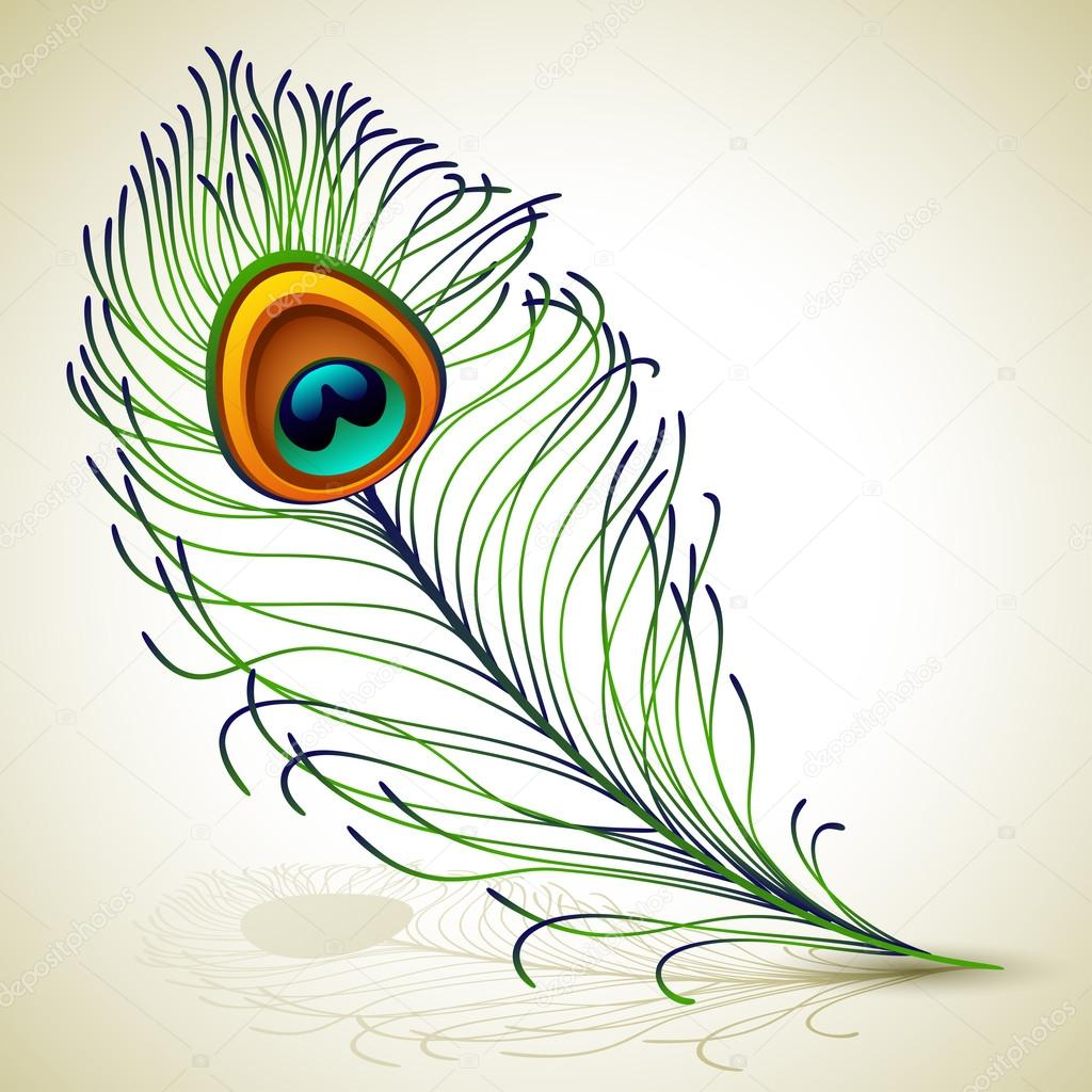 Vector illustration - peacock feather, EPS 10, RGB.Use transparency and blend modes  Stock Vector #12193386