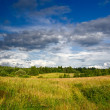 Green meadow under dramatic sky landscape — Stock Photo #14310561