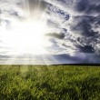 Field and sunset sky — Stock Photo