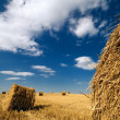 Stock Photo: Perspective landscape with haystacks and blue sky