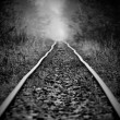 The curve railway — Foto Stock