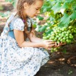 Little girl with pigtails holding bunch of grapes — Stock Photo #13396282