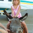Smiling little girl sitting on donkey - Stock Photo
