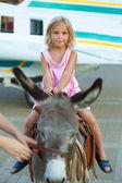 Smiling little girl sitting on donkey — Stock Photo