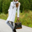 Nice young woman with handbag — Stock Photo