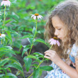 Little girl smelling flower garden - Stock Photo