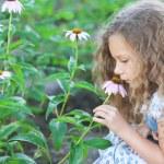 Little girl smelling flower garden — Stock Photo #19313355