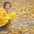 Little girl in yellow coat collects fallen leaves - Stock Photo