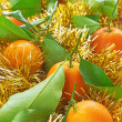 Tangerines in ornaments - Foto Stock