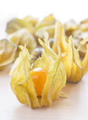 Ripe orange physalis — Stock Photo