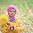 Little girl in yellow coat collects yellow maple leaves — Stock Photo #24779615