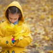 Little girl holding autumn leaves — Stock Photo