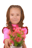 Smiling little girl with bouquet of flower — Stock Photo