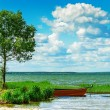 Lake, boat and tree — Stock Photo