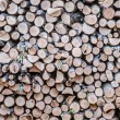 Stock Photo: Rustless logs