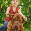 Young girl and mastiff — Stock Photo
