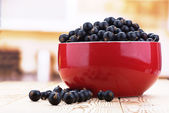 Berries black currants — Stock Photo