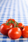 Branch five tomatoes — Stock Photo