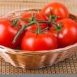 Tomatoes on branch — Stock Photo #50429647