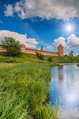Saviour Monastery of St. Euthymius — Foto Stock