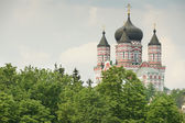Cathédrale de saint panteleimon (kiev) — Photo