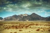 Montanhas do sinai — Foto Stock