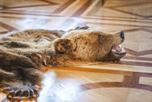 Skin killed bear — Stock Photo