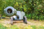 Howitzer — Stock Photo