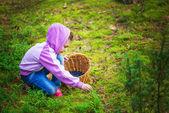 Girl pick blueberries — Stock Photo