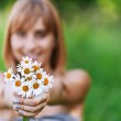 Young woman holding bouquet of camomiles — Stock Photo #6126964
