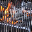 Grate on the grill - Stock Photo