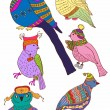A collection of cute hand-drawn color bird doodles — Stok Vektör