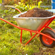 Garden wheelbarrow — Stock Photo