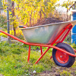 Garden wheelbarrow — Stock Photo #32738357