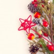Christmas border with hawthorn, fir tree and wild apples — ストック写真