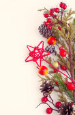 Christmas border with hawthorn, fir tree and wild apples — Stock Photo